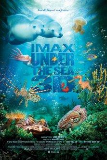 Under the Sea IMAX