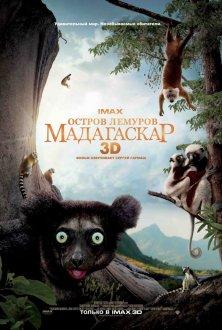 LEMURLAR ADASI: MADAQASKAR IMAX